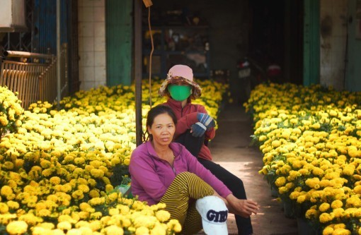 Tet flower sellers