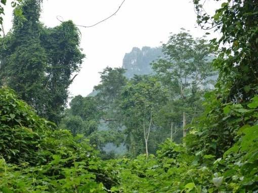 Beautiful Phong Nha National Park