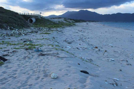 ... and this is the same beach before the clean-up.