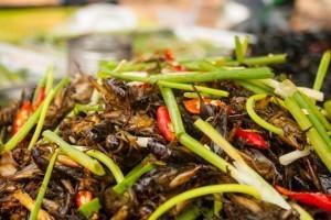 Khmer delights InsideAsia Tours