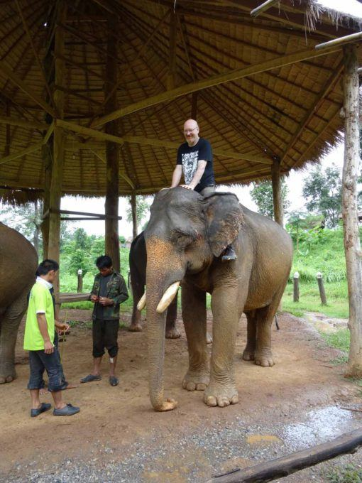 Sitting on the elephant's neck is preferable to using a howdah, which can cause back problems