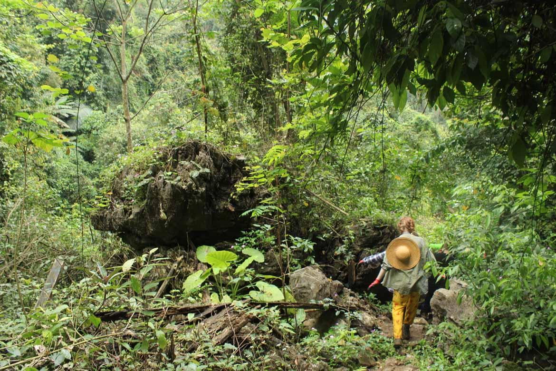 Trekking in Quang Binh Province