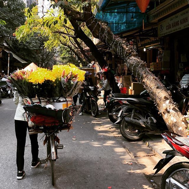 Hanoi in Vietnam, lady with flowers on bicycle